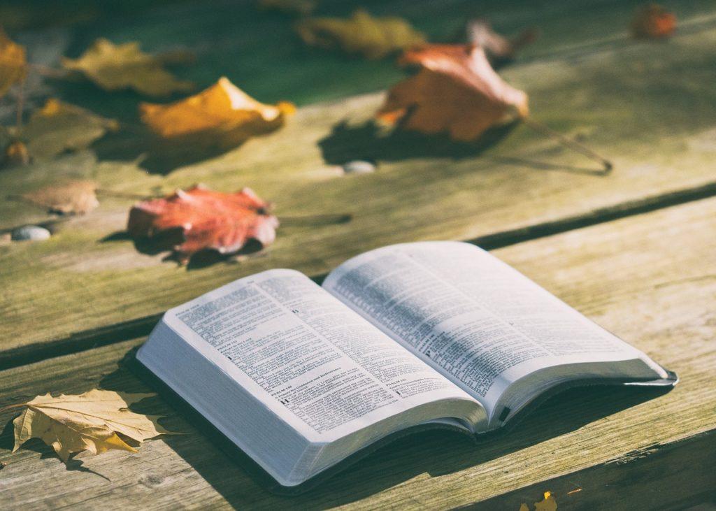 Bibel, Bibelstunde