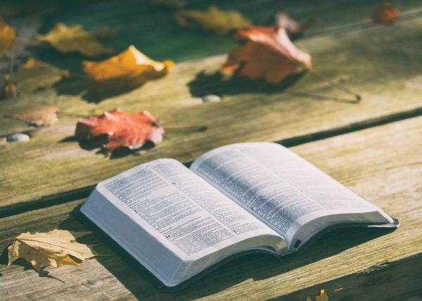 Die Stunde der Bibel 2.0