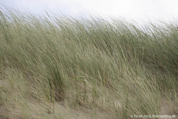 Sommer und Sand