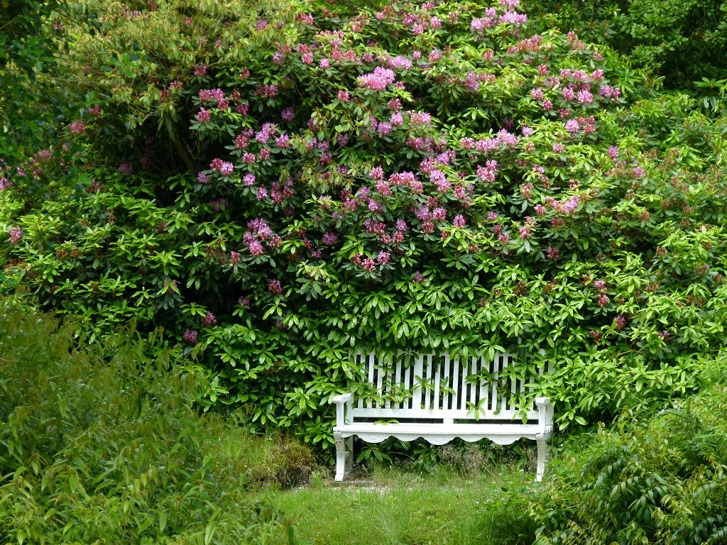 gemütliche Bank im Garten, Bank, Garten