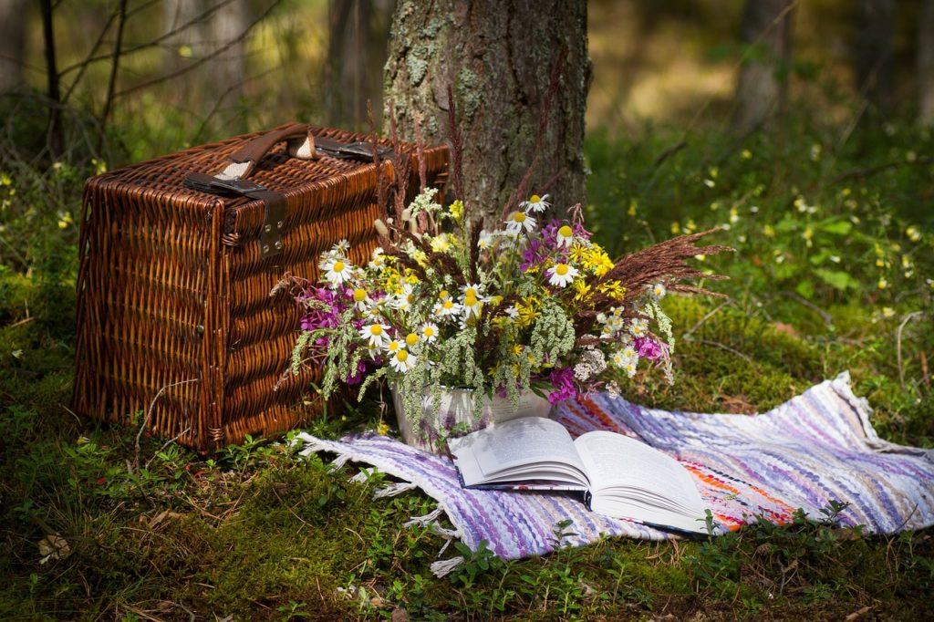 gemütliches Picknick,