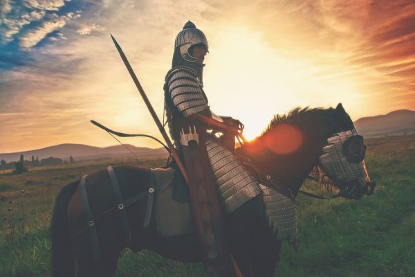 Die T-Killerzelle und andere tapfere Krieger